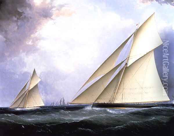 Puritan and Genesta, America's Cup 1885 Oil Painting - James E. Buttersworth