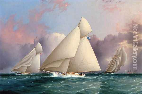 Yacht 'Sappho' Beating to the Wind Oil Painting - James E. Buttersworth