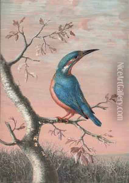 A Kingfisher On A Branch Oil Painting - Christophe-Ludwig Agricola