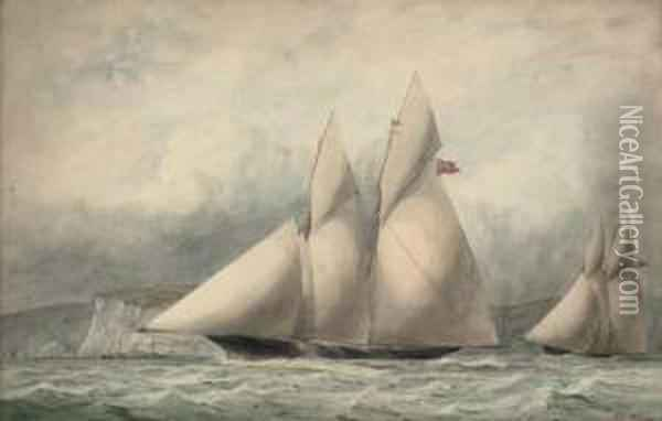 Cambria And Sappho In Close Quarters Off The Isle Of Wight Oil Painting - William Edward Atkins