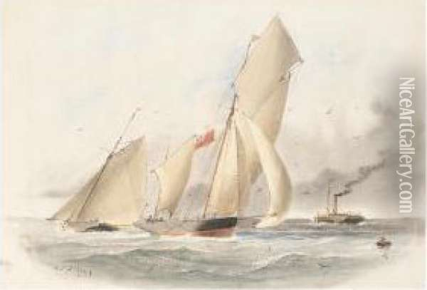 Sailing Boats And A Steam Ship Off The Coast Oil Painting - William Edward Atkins