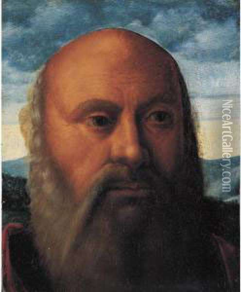 Head Of A Man, A Fragment Oil Painting - Giovanni Bellini