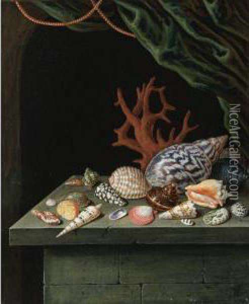 Still Life With Shells And Coral, Resting On A Stone Ledge Oil Painting - Antoine Berjon