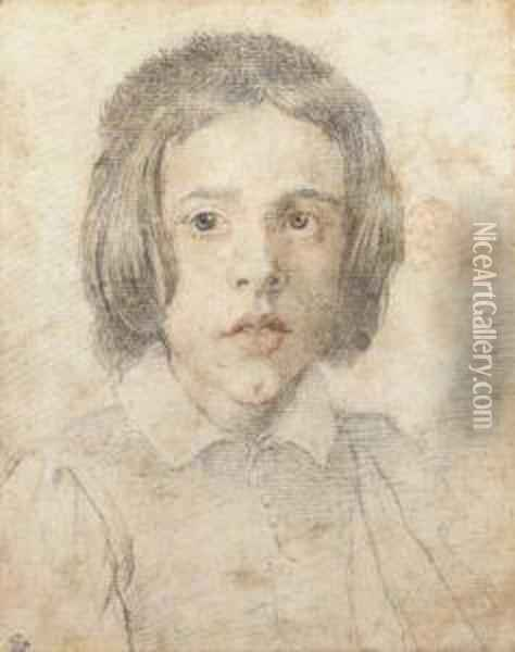 A Young Boy With Long Hair, Bust-length Oil Painting - Gian Lorenzo Bernini