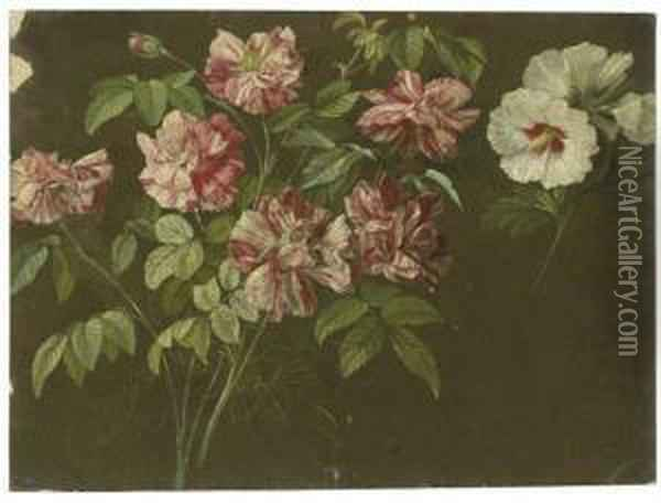 Roses And White Hibiscus Oil Painting - Pancrace Bessa