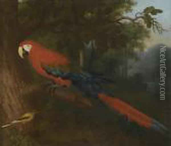 A Parrot And A Yellow Wagtail On A Branch Oil Painting - Jakob Bogdani Eperjes C