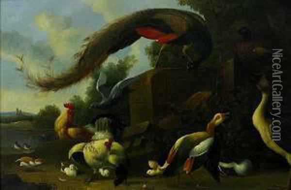 Exotic Birds In A Landscape Oil Painting - Jakob Bogdani Eperjes C