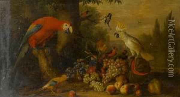 A Parrot, A Blue Tit And Other 