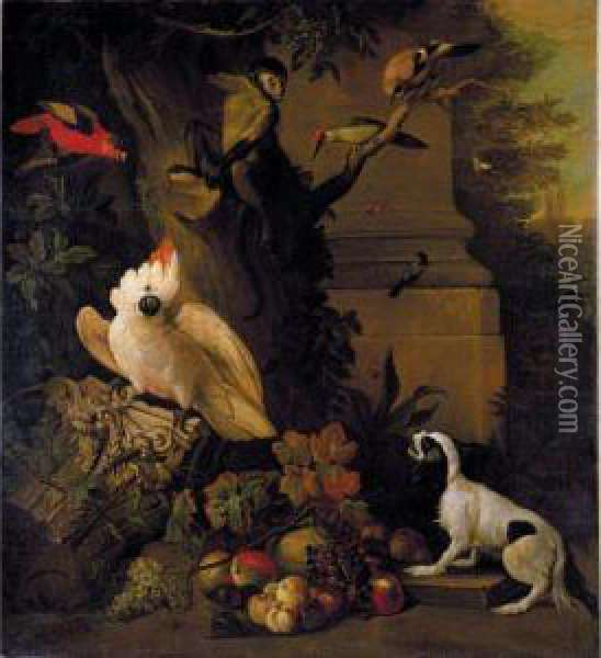 Still Life With Parrots, A Jay, A