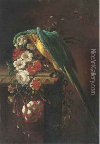 A Macaw On A Stone Ledge, With Poppies, Flowers And A Butterfly Tothe Side Oil Painting - Jakob Bogdani Eperjes C