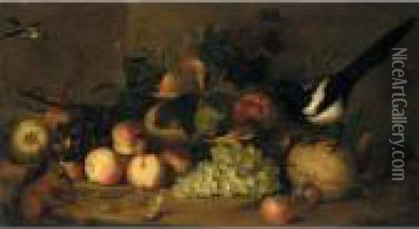 Still Life Of Fruit With A Magpie And A Red Squirrel In A Landscape Setting Oil Painting - Jakob Bogdani Eperjes C