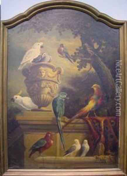 Exotic Birds And Urn In A Garden Oil Painting - Jakob Bogdani Eperjes C