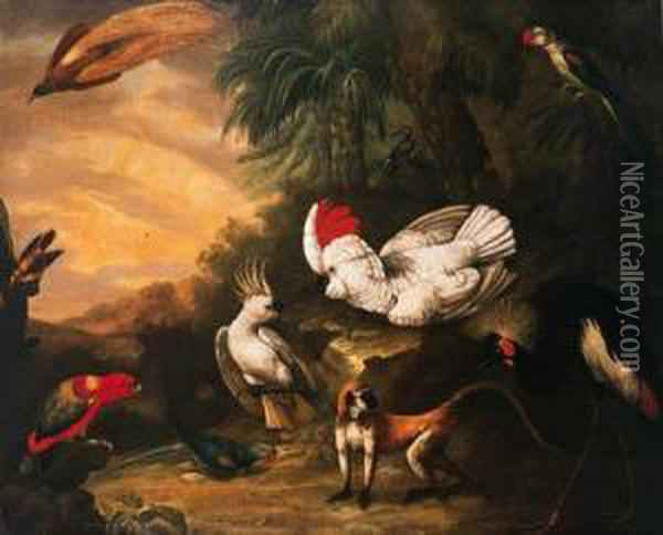 A Bird Of Paradise, A Moluccan  And A Lesser Sulphar Crestedcockatoo, A Chattering Lory, A Banded  Parakeet, A Crested Crane Anda Gibbon In A Tropical Landscape Oil Painting - Jakob Bogdani Eperjes C
