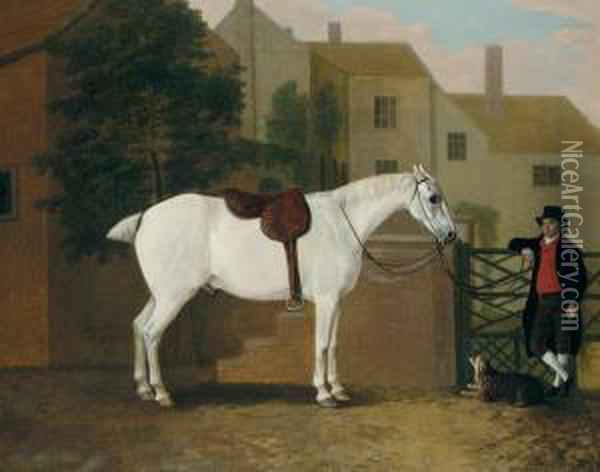 Picture Of Jack, A Favourite Grey Oil Painting - John Boultbee