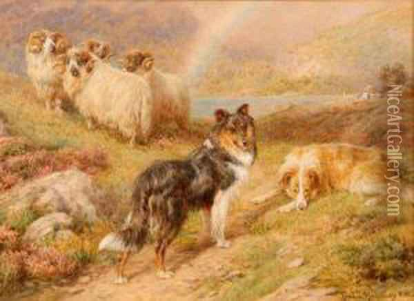 Sheep And Collie Dogs In Highland Setting Oil Painting - Basil Bradley