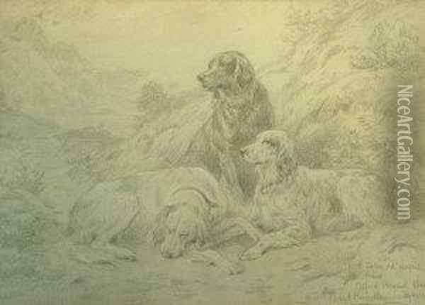 Study Of Three Setters In A Landscape Oil Painting - Basil Bradley