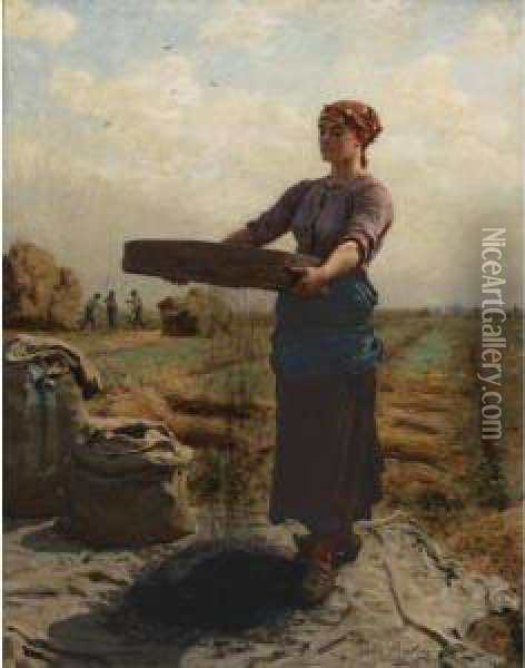 Peasant Woman Sifting Rapeseed Oil Painting - Jules Breton