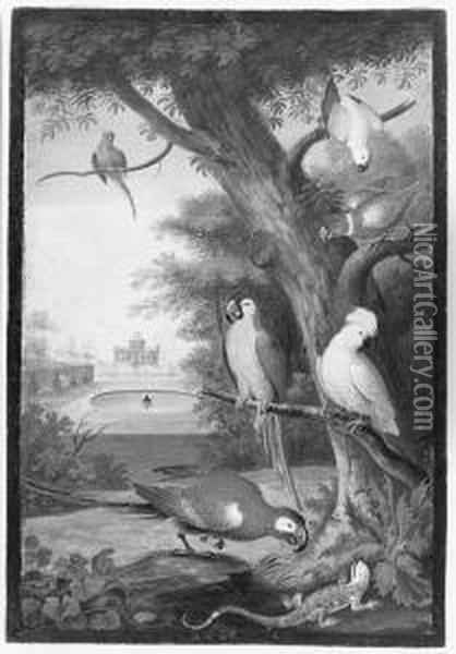 Parrots And A Lizard In A Palatial Garden Oil Painting - Johannes Bronkhorst
