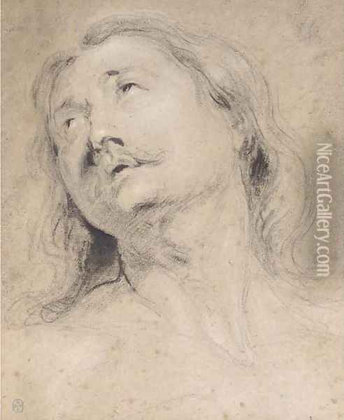 Head of a man looking up to the left Oil Painting - Thomas Willeboirts, Called Bosschaert