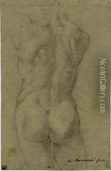 The Torso Of A Male Nude, Seen From Behind Oil Painting - Lodovico Carracci