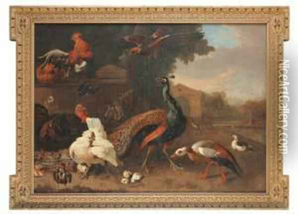 Ornamental Fowl By A Pool Oil Painting - Pieter Casteels