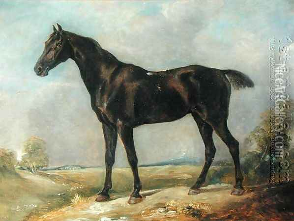 Golding Constable's Black Riding-Horse, c.1805-10 Oil Painting - John Constable