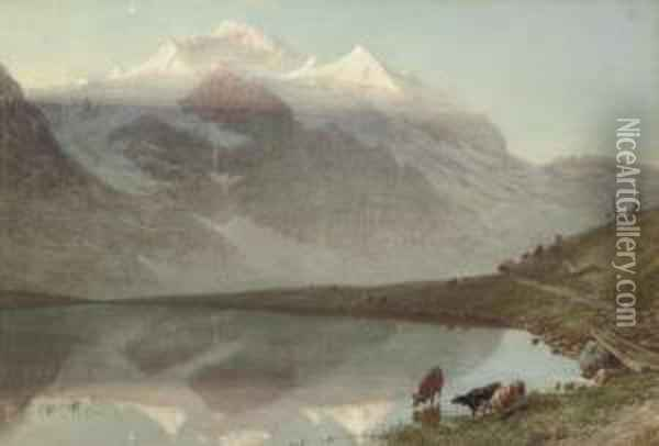 The Jungfrau At Sunrise Oil Painting - William Collingwood Smith