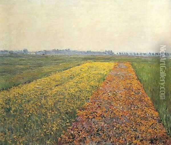 The Yellow Fields At Gennevilliers Oil Painting - Gustave Caillebotte