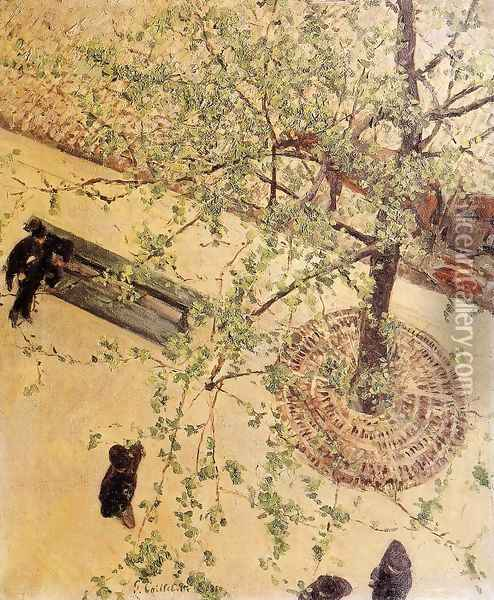 Boulevard Seen From Above Oil Painting - Gustave Caillebotte