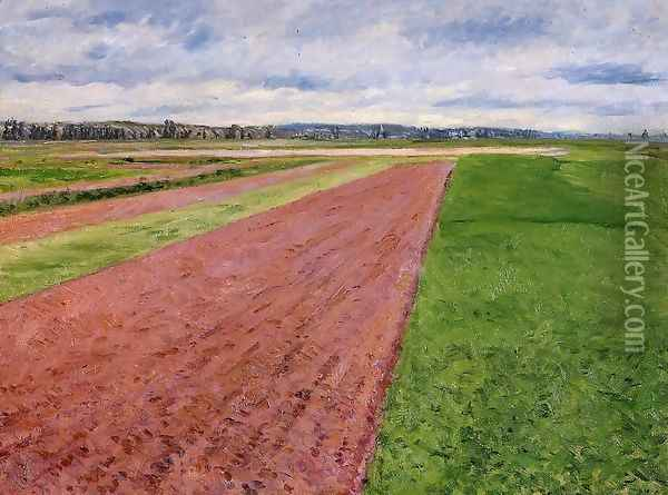 Landscape Study In Yellow And Rose Oil Painting - Gustave Caillebotte