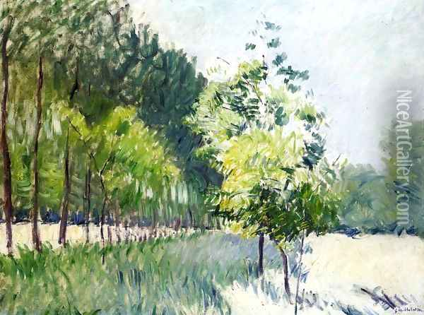 Lane Bordered by Trees Oil Painting - Gustave Caillebotte