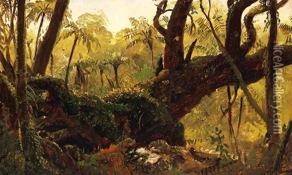Rain Forest, Jamaica, West Indies Oil Painting - Frederic Edwin Church