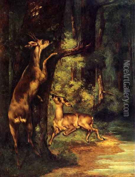 Male and Female Deer in the Woods Oil Painting - Gustave Courbet