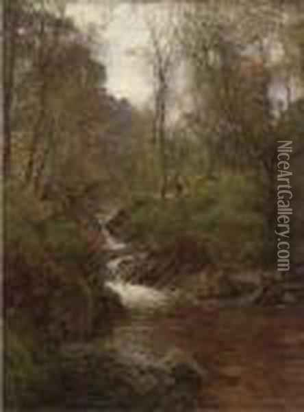 A Wooded Stream Oil Painting - Alexander Brownlie Docharty