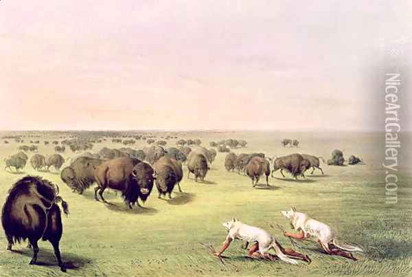 Hunting Buffalo Camouflaged with Wolf Skins, c.1832 Oil Painting - George Catlin