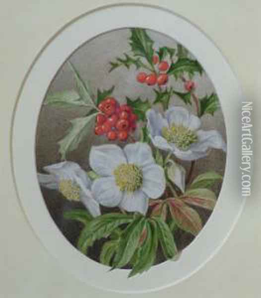 Botanical Study Oil Painting - Mary Elizabeth Duffield