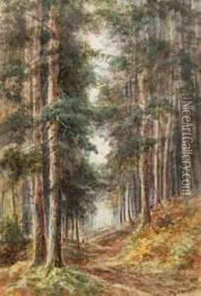 Figures On A Path In A Pine Forest Oil Painting - Walter Duncan