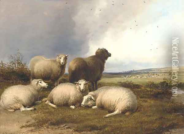 Sheep grazing in a landscape, with rain approaching Oil Painting - Thomas Sidney Cooper