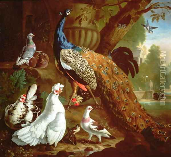 A Peacock in a Classical Landscape, 1719 Oil Painting - Pieter Casteels