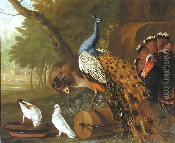 An Assembly of Birds in a Classical Park, 1719 Oil Painting - Pieter Casteels