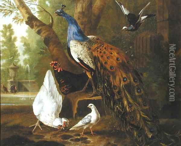 An Assembly of Birds in a Classical Park, 1719 2 Oil Painting - Pieter Casteels