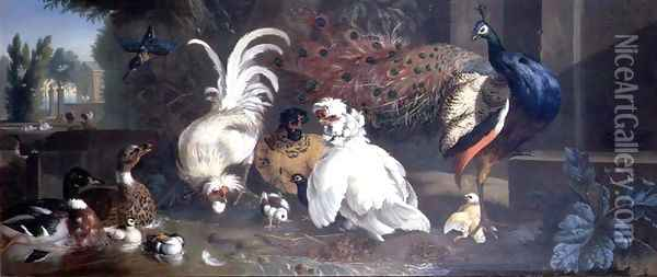 A Peacock, Chickens, Ducks and a Kingfisher Oil Painting - Pieter Casteels