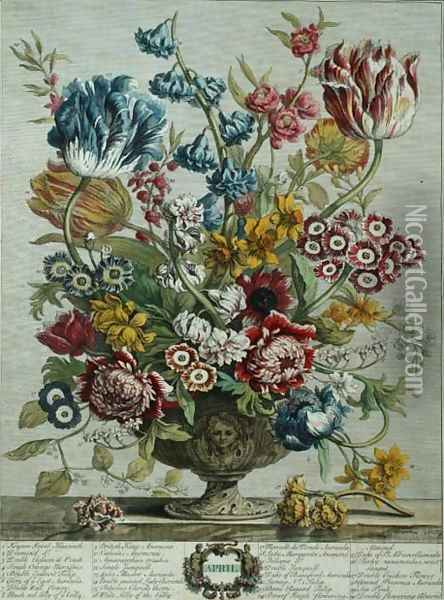 April, from 'Twelve Months of Flowers', by Robert Furber (c.1674-1756) Oil Painting - Pieter Casteels