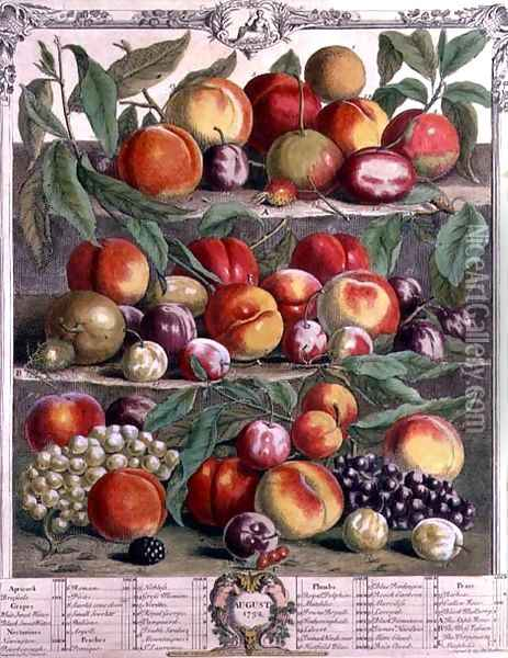 August, from 'Twelve Months of Fruits' Oil Painting - Pieter Casteels