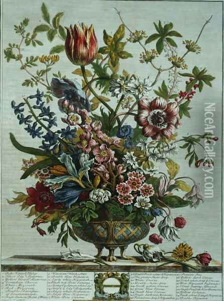 February, from `Twelve Months of Flowers Oil Painting - Pieter Casteels