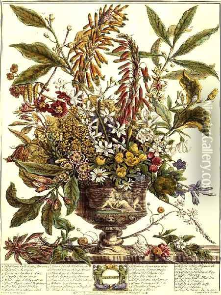 January, from `Twelve Months of Flowers' Oil Painting - Pieter Casteels