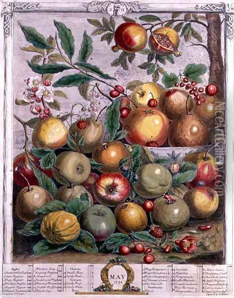 May, from 'Twelve Months of Fruits' Oil Painting - Pieter Casteels