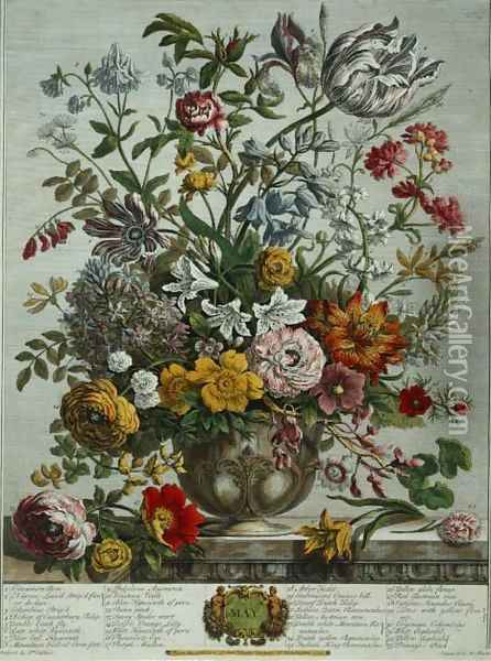 May, from 'Twelve Months of Flowers' Oil Painting - Pieter Casteels