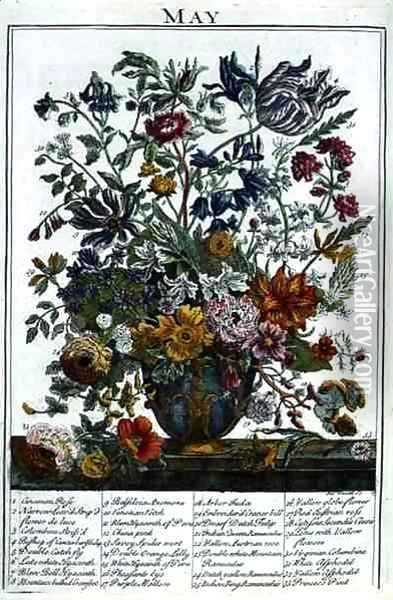 May, from 'The Flower Garden Displayed' Oil Painting - Pieter Casteels