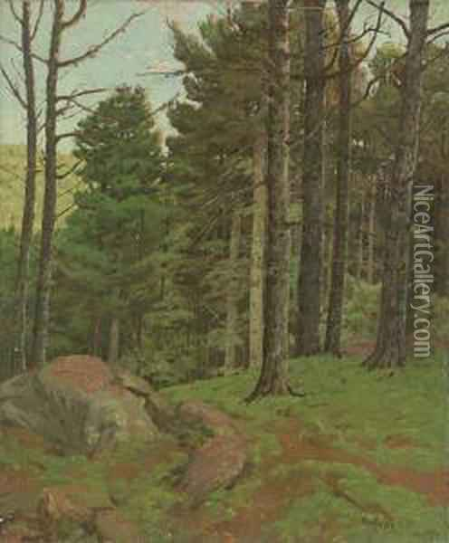Afternoon Amidst The Pines Oil Painting - Ben Foster